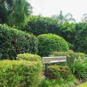 Possum Ridge Scatter Garden